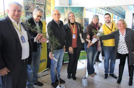 """Projeto """"Junho Verde"""" abre comemorações do Dia Mundial do Meio Ambiente"""