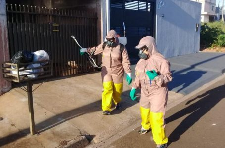 Arapongas na guerra para combater o Aedes