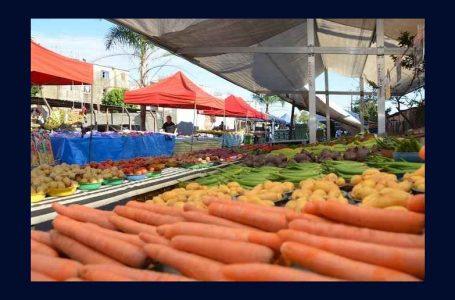 Decreto autoriza volta das feiras livres em Arapongas, mas com várias regras