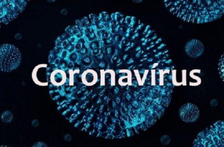 Arapongas registra 22 novos casos de Covid-19, 51 curados e chega a 89% de curados