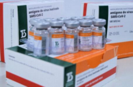 Arapongas recebe nova remessa e anuncia retomada da vacinação