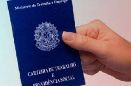 Agência do Trabalhador de Arapongas divulga 75 vagas de emprego