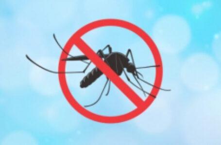 Arapongas segue sem casos confirmados de dengue